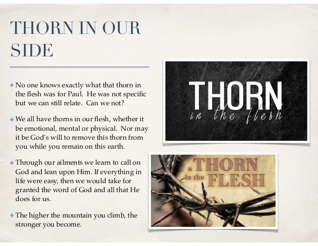 THORN IN OUR SIDE ✤ No one knows exactly what that thorn in the flesh was for Paul. He was not specific but we can still rel...