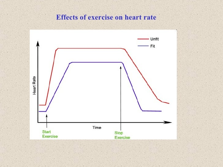 how exercise effects heart rate The heart is a muscle that is used to pump blood throughout the body and helps circulate oxygen and red blood cells to muscles and organs heart rate is the measure of how many times a person's heart beats in a certain amount of time.