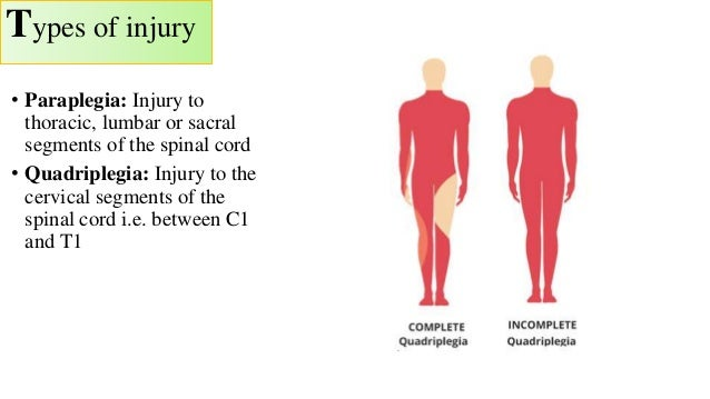 types of spinal cord injuries pdf