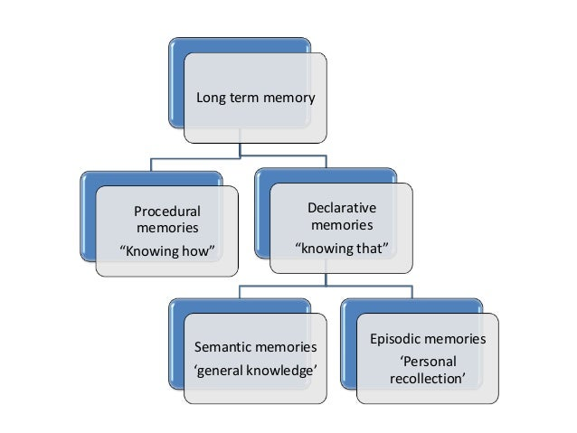 long term memory notes Short- and long-term memory are separate processes, and items do not have to pass through short-term memory in order to reach long-term memory.