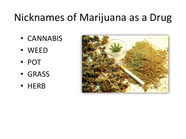 Look For A Recreational Marijuana Dispensary