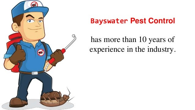 Looking for pest control services in melbourne Slide 2