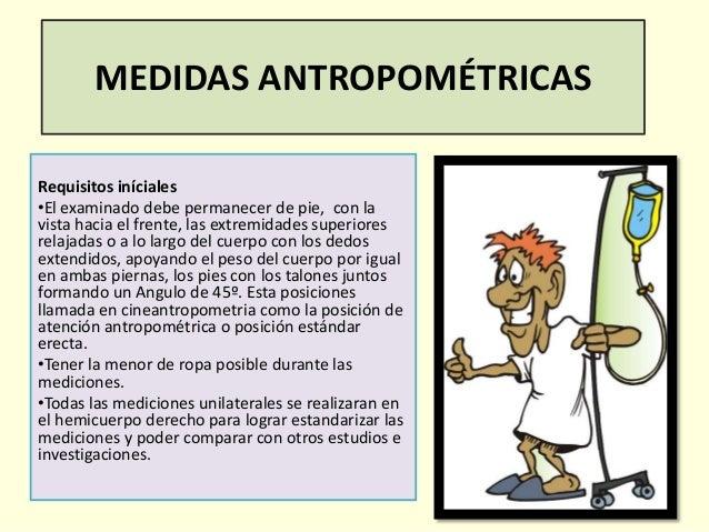 examinaci n de las medidas antropometricas