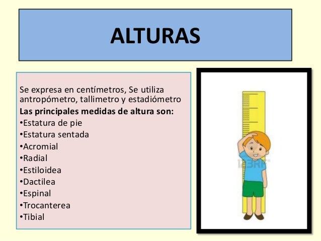 examinaci n de las medidas antropometricas On cuales son las medidas antropometricas en niños