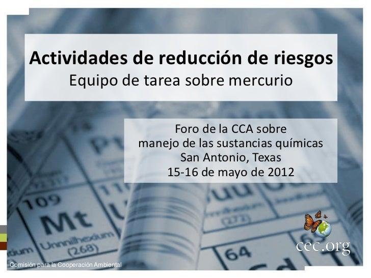 Actividades de reducción de riesgos                    Equipo de tarea sobre mercurio                                     ...