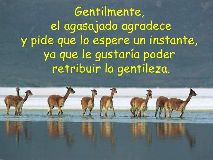 Gentilmente,   el agasajado agradece  y pide que lo espere un instante,  ya que le gustaría poder  retribuir la gentileza.