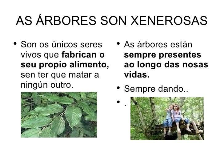 AS ÁRBORES SON XENEROSAS●    Son os únicos seres    ●                               As árbores están    vivos que fabrican...