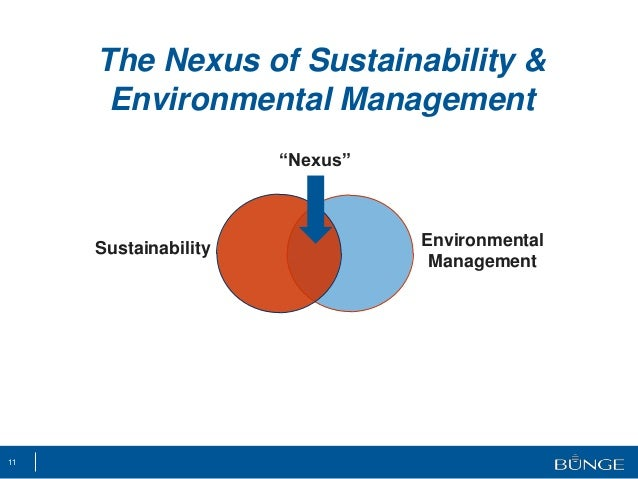 The Nexus Between Sustainability And Environmental