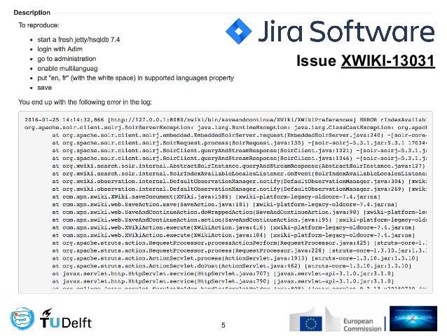 !5 Issue XWIKI-13031