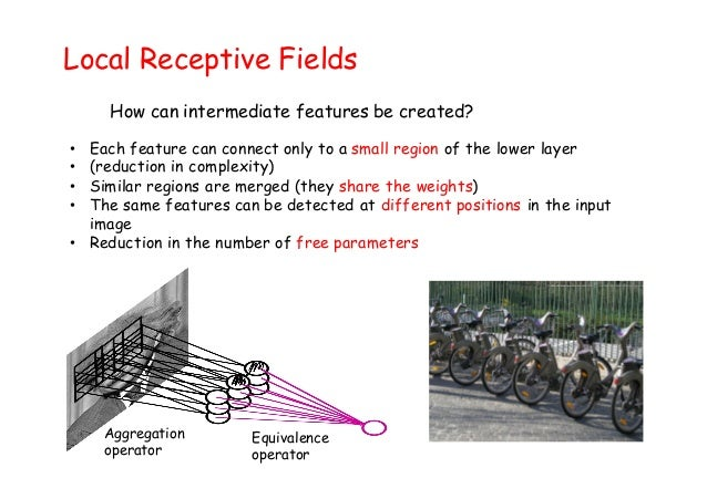 Local Receptive Fields • Each feature can connect only to a small region of the lower layer • (reduction in complexity) • ...
