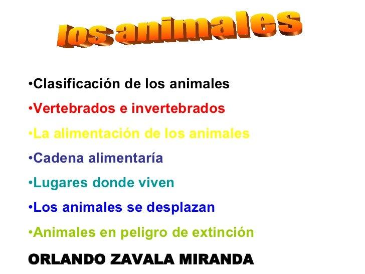 los animales <ul><li>Clasificación de los animales </li></ul><ul><li>Vertebrados e invertebrados </li></ul><ul><li>La alim...