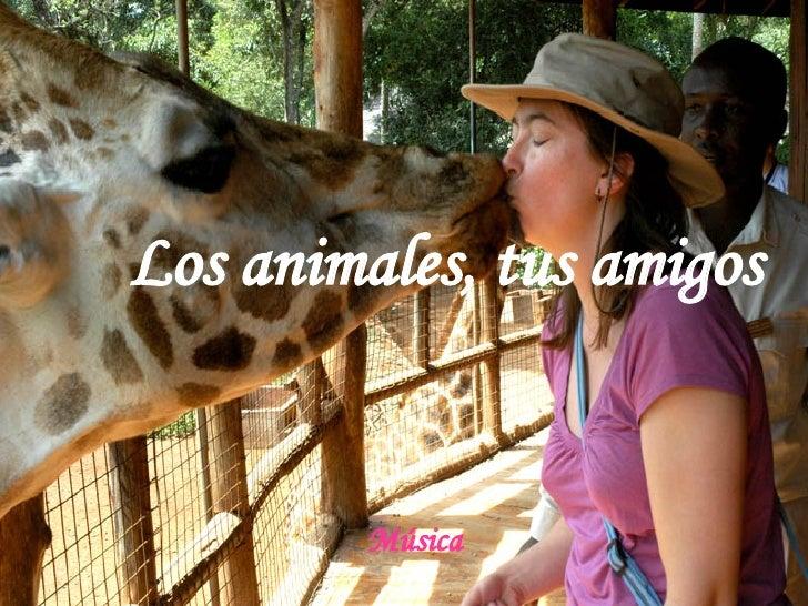 Los animales, tus amigos Música