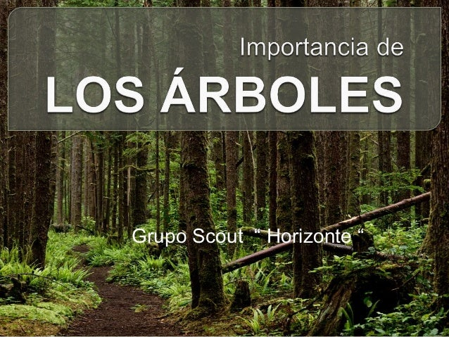"Grupo Scout "" Horizonte """