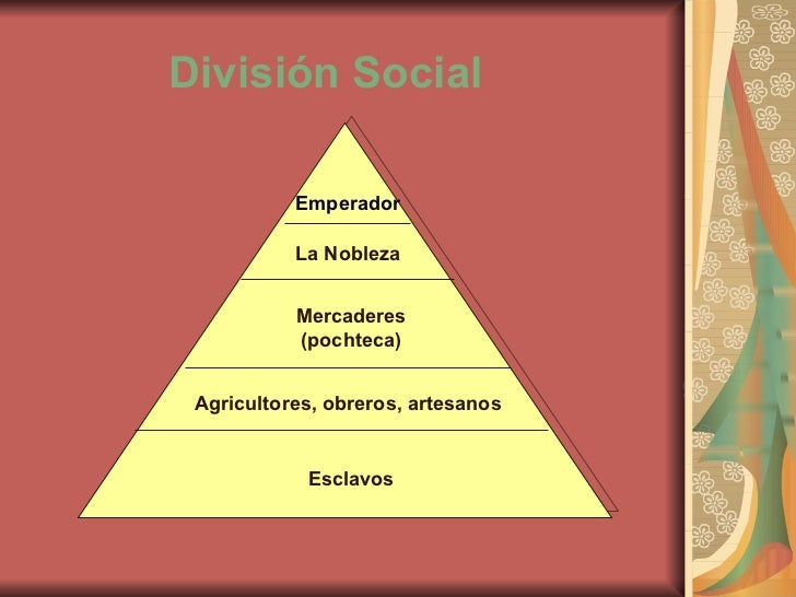 social division The department of social services has free forms and publications that can provide you with information and guidance in a number of important areas.
