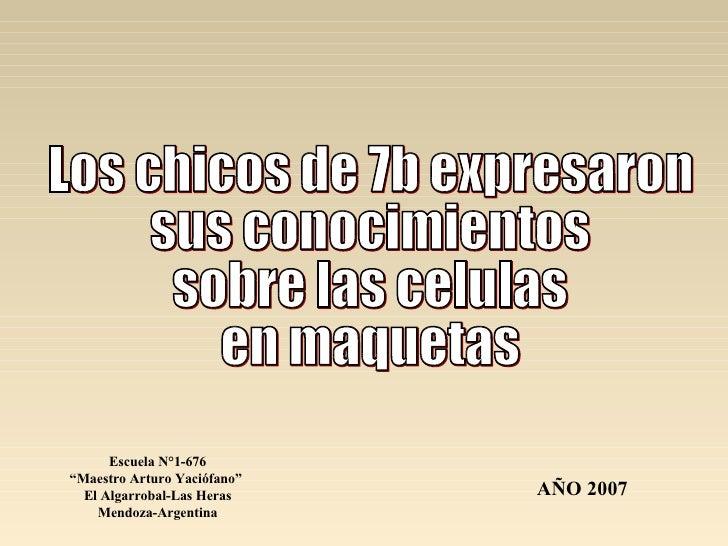 """Los chicos de 7b expresaron  sus conocimientos  sobre las celulas  en maquetas Escuela N°1-676 """"Maestro Arturo Yaciófano"""" ..."""