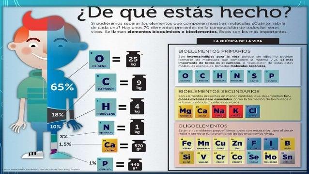 Los elementos quimicos en nuestro cuerpo for Componentes quimicos del suelo