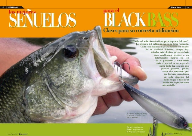 SEÑUELOSSEÑUELOS ¿Cuál es el señuelo más eficaz para la pesca del bass? La pregunta del millón no tiene una única respuesta...
