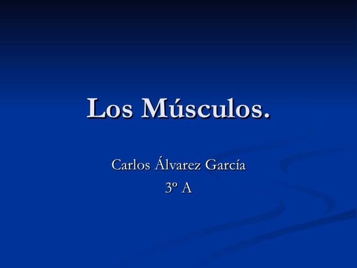 Los Músculos. Carlos Álvarez García 3º A