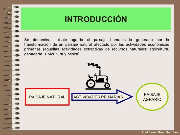 Los paisajes agrarios de España Slide 2