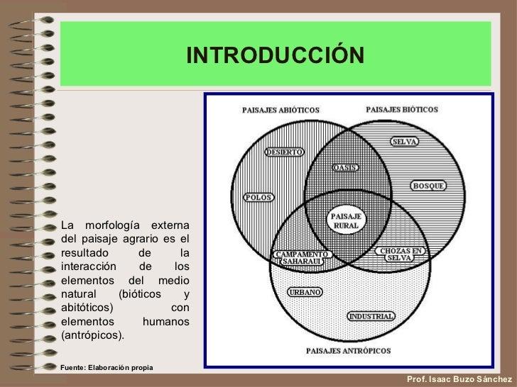 Los paisajes agrarios de España Slide 3