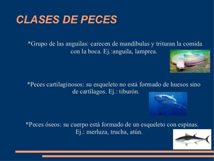 Grupo Clase Con Muuucha... Clase!