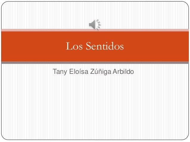 Tany Eloísa Zúñiga Arbildo Los Sentidos