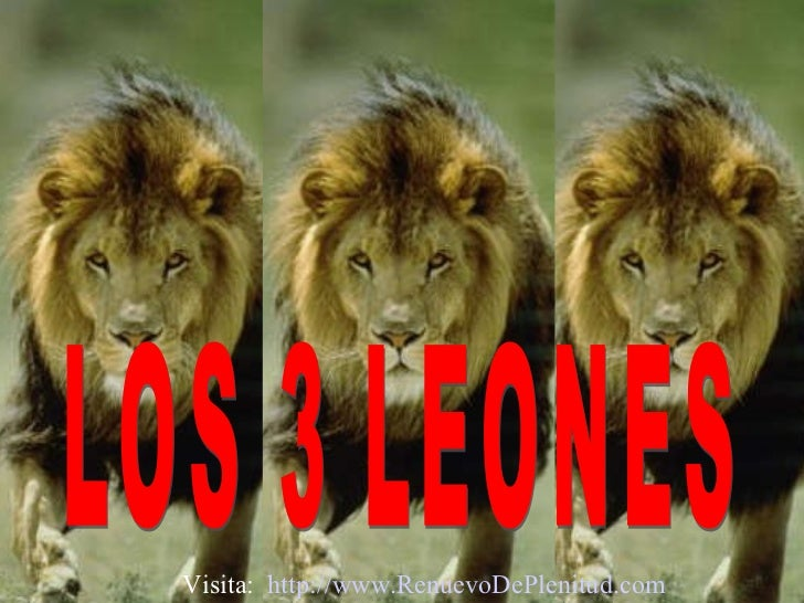 LOS 3 LEONES Visita:  http:// www.RenuevoDePlenitud.com
