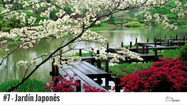 jardn japons with de jardines