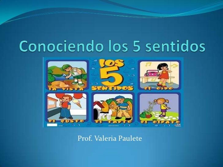 Los 5 sentidos for Mural de los 5 sentidos