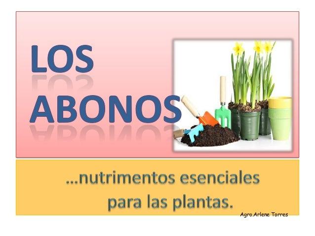 Agro.Arlene Torres