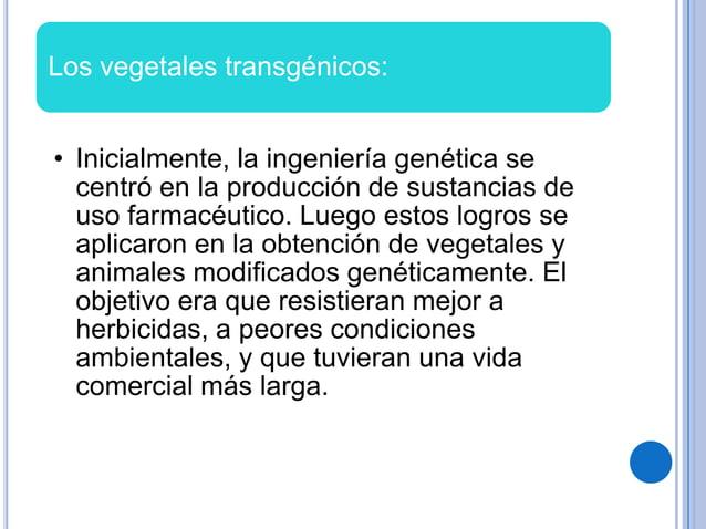 Los vegetales transgénicos:• Inicialmente, la ingeniería genética secentró en la producción de sustancias deuso farmacéuti...