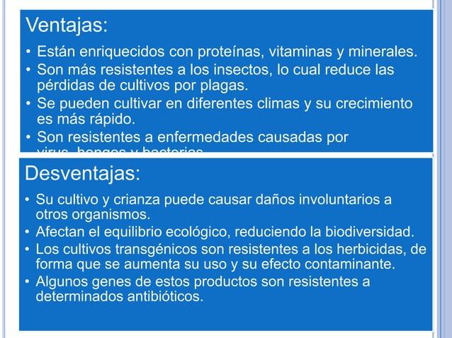 Ventajas:• Están enriquecidos con proteínas, vitaminas y minerales.• Son más resistentes a los insectos, lo cual reduce la...