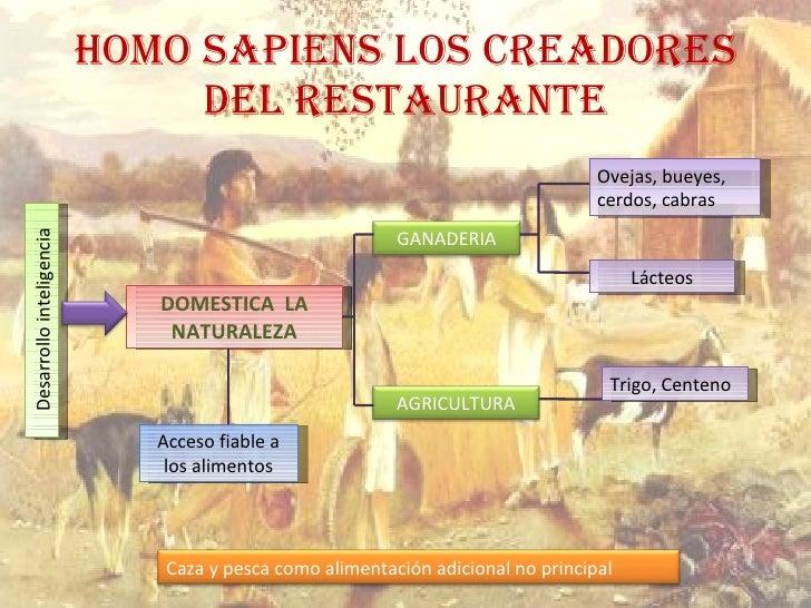 HOMO SAPIENS LOS CREADORES DEL RESTAURANTE DOMESTICA  LA NATURALEZA Ovejas, bueyes, cerdos, cabras Trigo, Centeno Acceso f...