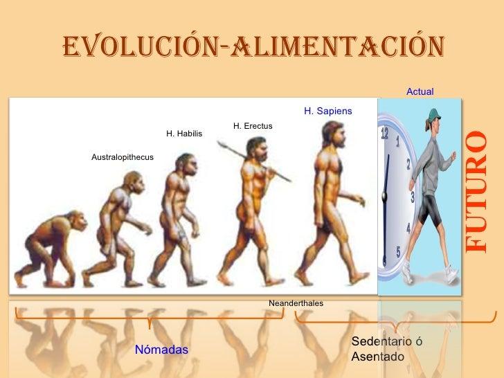 EVOLUCIÓN-ALIMENTACIÓN H. Habilis H. Erectus Neanderthales H. Sapiens Australopithecus FUTURO Nómadas Sedentario ó Asentad...