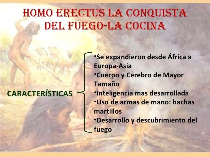 HOMO ERECTUS LA CONQUISTA DEL FUEGO-LA COCINA CARACTERÍSTICAS <ul><li>Se expandieron desde África a Europa-Asia </li></ul>...
