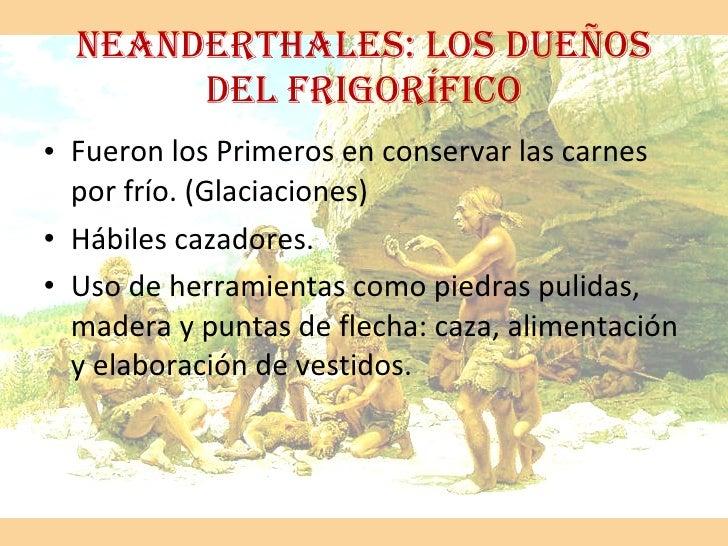 NEANDERTHALES: LOS DUEÑOS DEL FRIGORÍFICO <ul><li>Fueron los Primeros en conservar las carnes por frío. (Glaciaciones) </l...