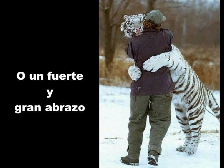 O un fuerte y gran abrazo