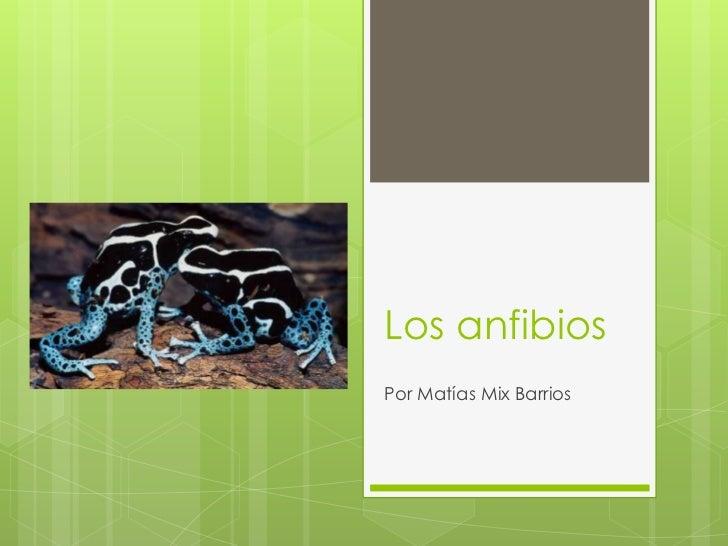 Los anfibios<br />Por Matías Mix Barrios<br />