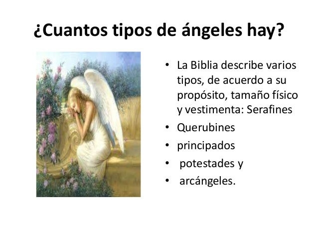 Los angeles for Cuantos codones existen