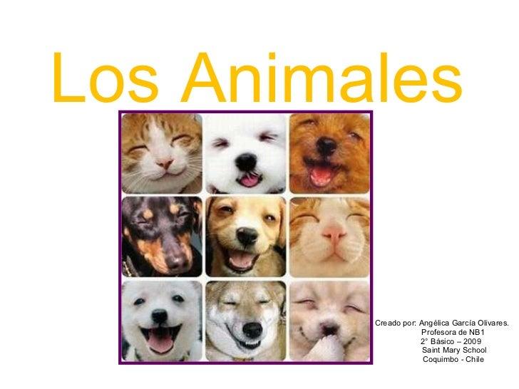 Los Animales Creado por: Angélica García Olivares. Profesora de NB1 2° Básico – 2009 Saint Mary School Coquimbo - Chile