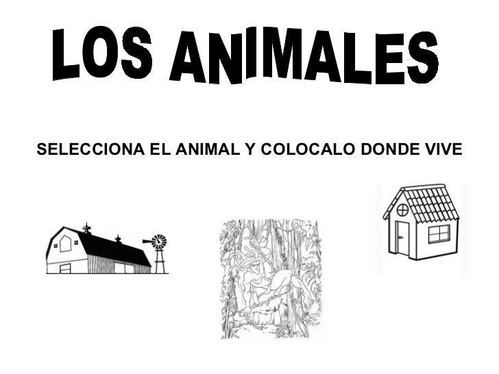 LOS ANIMALES SELECCIONA EL ANIMAL Y COLOCALO DONDE VIVE