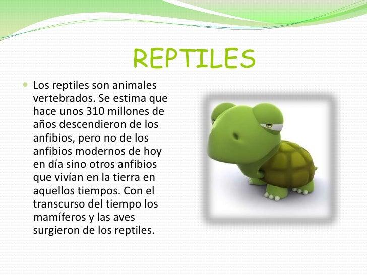 REPTILES<br />Los reptiles son animales vertebrados. Se estima que hace unos 310 millones de años descendie...