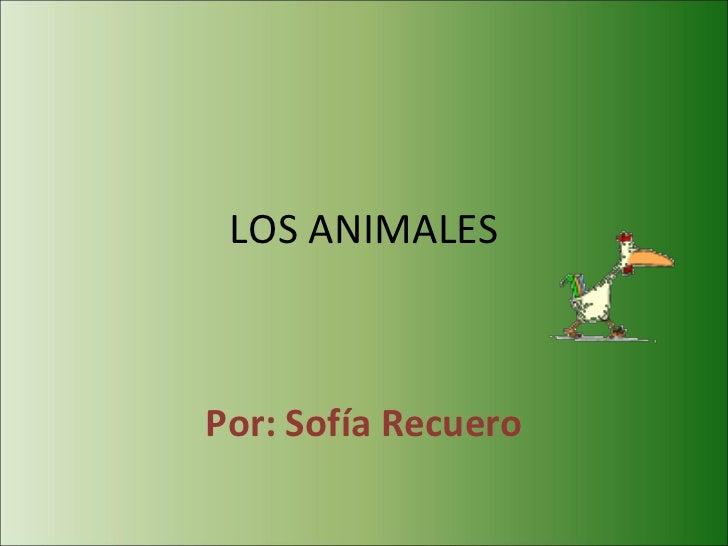 LOS ANIMALES Por: Sofía Recuero