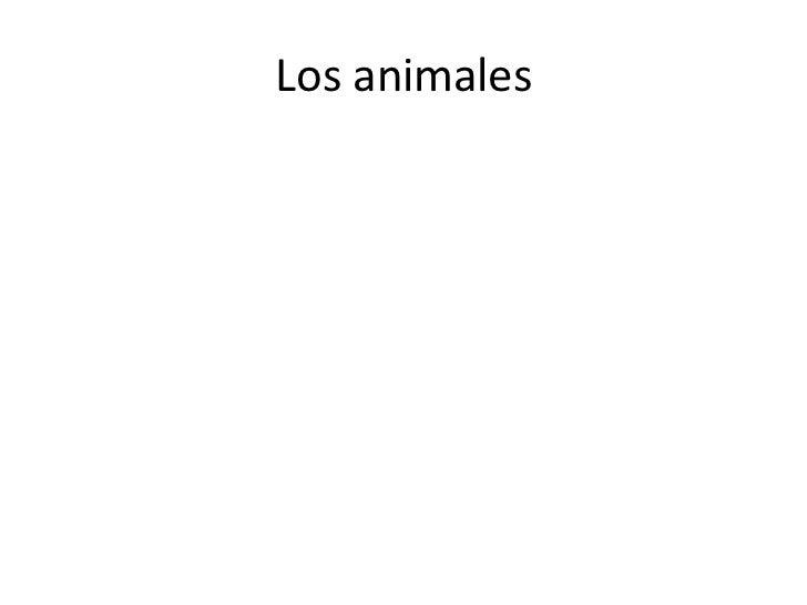 Los animales<br />