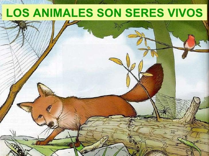 LOS ANIMALES SON SERES VIVOS