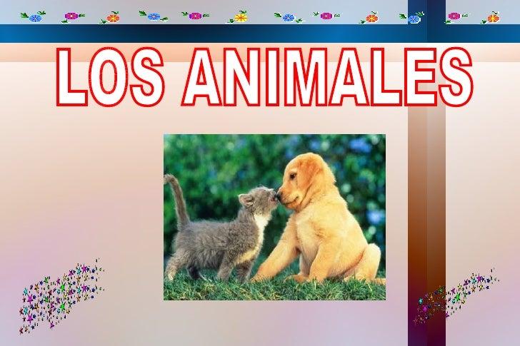 E n la clasificación científica de los seres vivos se llama animal a cada uno de losmiembros de un grupo de eucariontes, p...