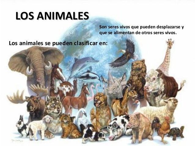 LOS ANIMALES                                 Son seres vivos que pueden desplazarse y                                 que ...
