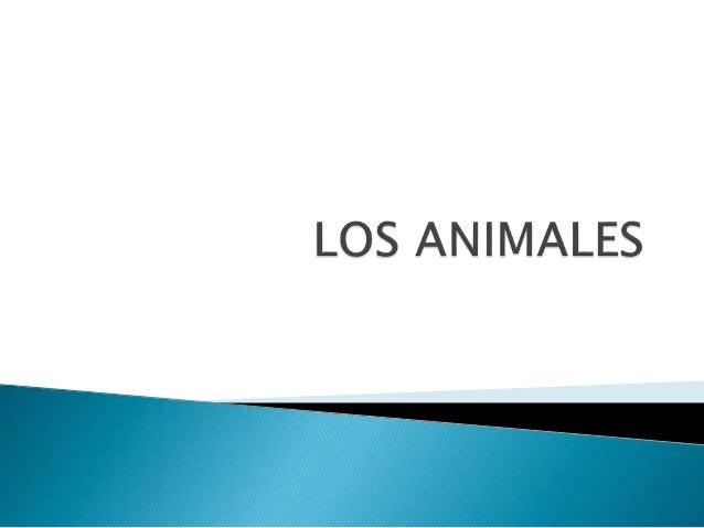  Los animales carnívoros son los que se alimentan de la carne de otros animales.  Los animales herbívoros son los que se...