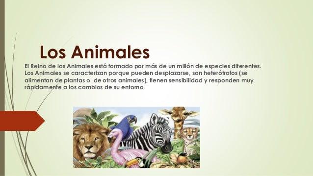 Los Animales El Reino de los Animales está formado por más de un millón de especies diferentes. Los Animales se caracteriz...