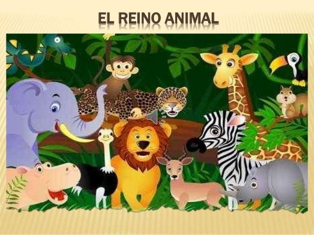 S I G L A S El Reino De Los Animales